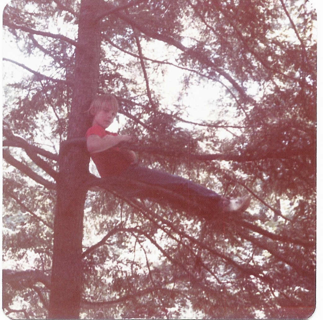 young Lee in a tree
